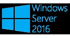 Лицензия Windows Server CAL 2016 Russian 1pk DSP OEI 1 Clt User CAL (R18-05234)